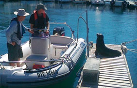 rya-level-2-powerboat-certificate